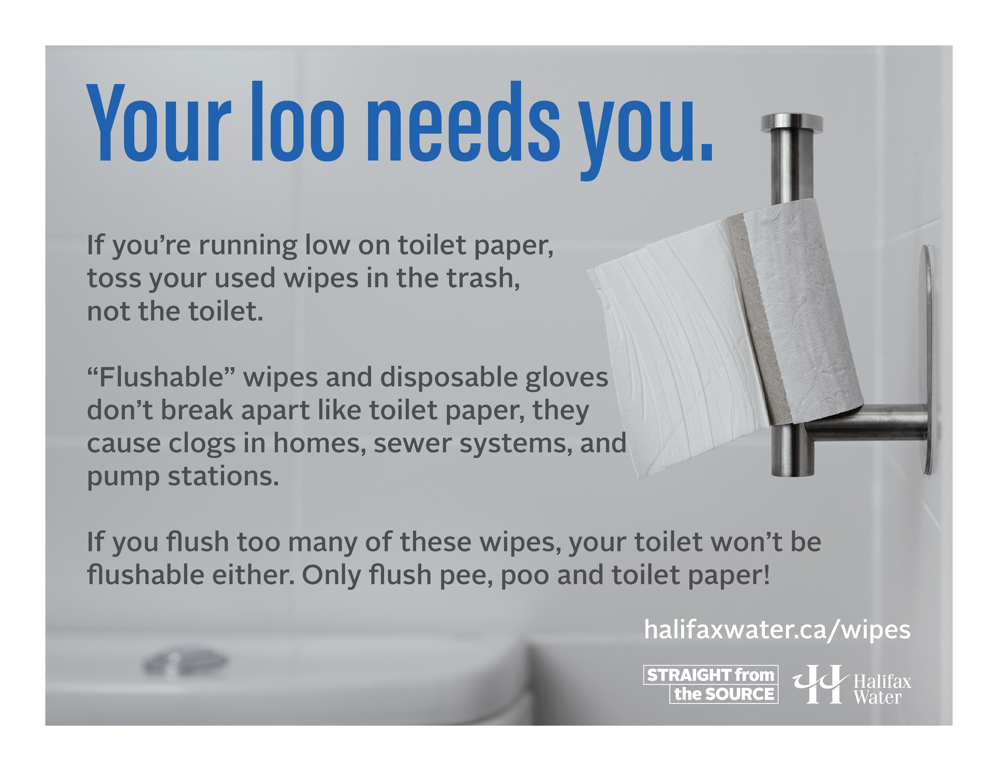 Don't Flush Wipes or Gloves - Posters - 8.5in x 11in - 1