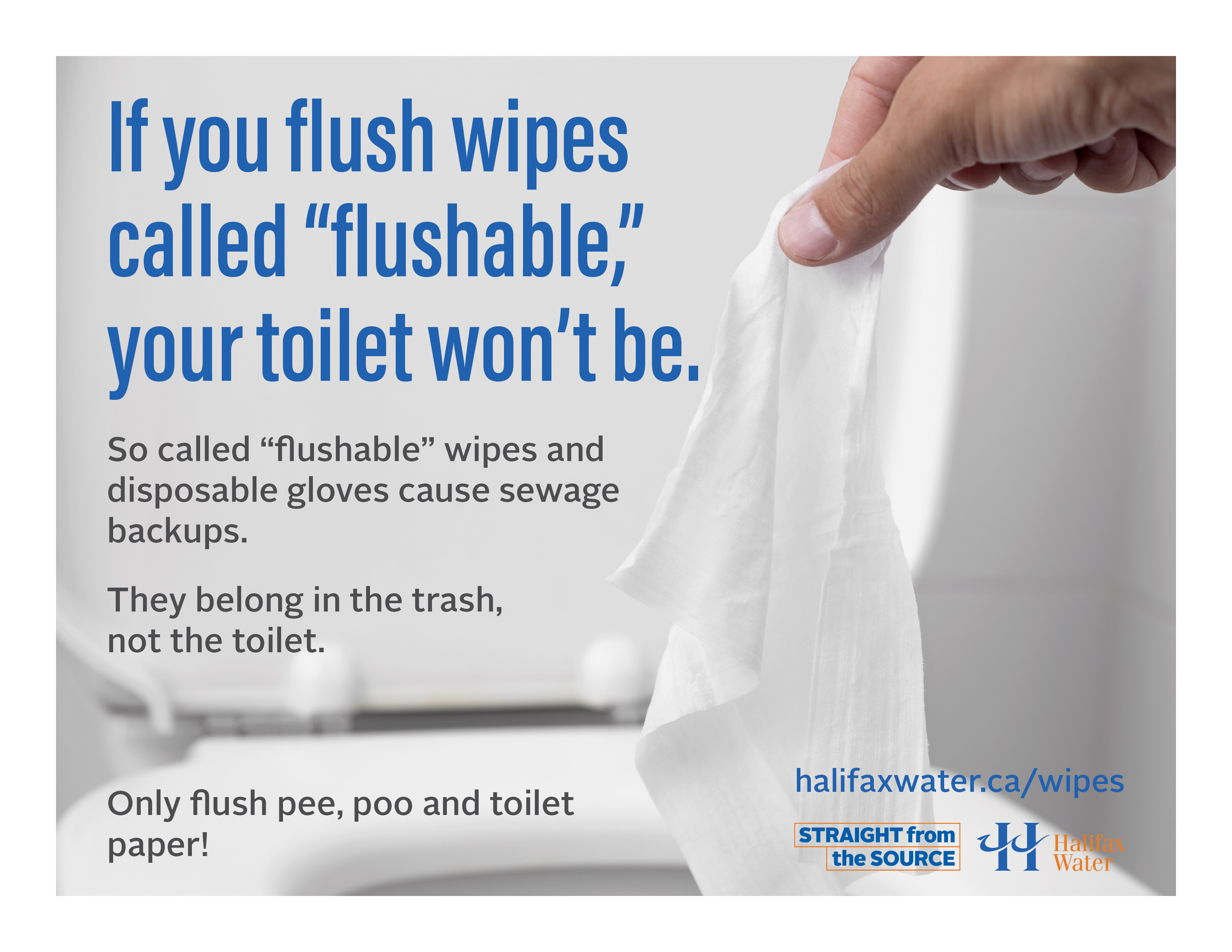 Don't Flush Wipes or Gloves - Posters - 8.5in x 11in - 2