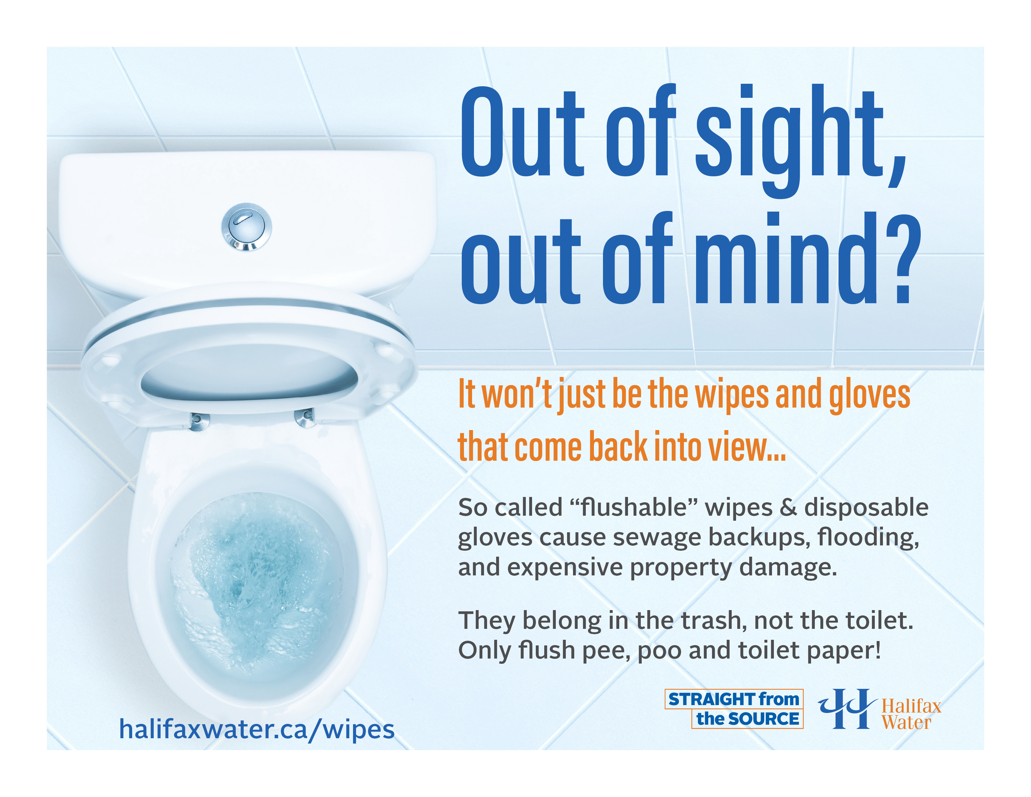 Don't Flush Wipes or Gloves - Posters - 8.5in x 11in - 3