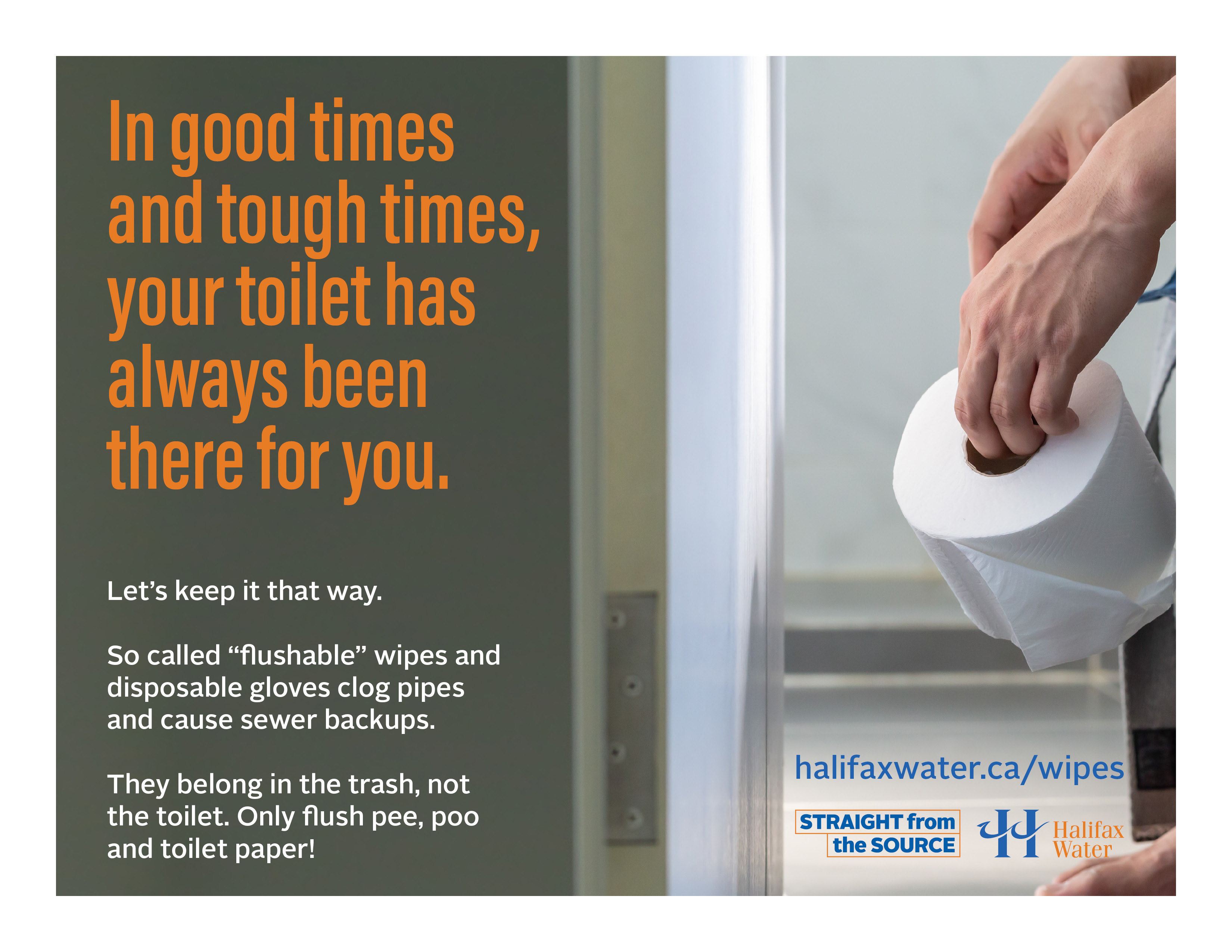 Don't Flush Wipes or Gloves - Posters - 8.5in x 11in - 6
