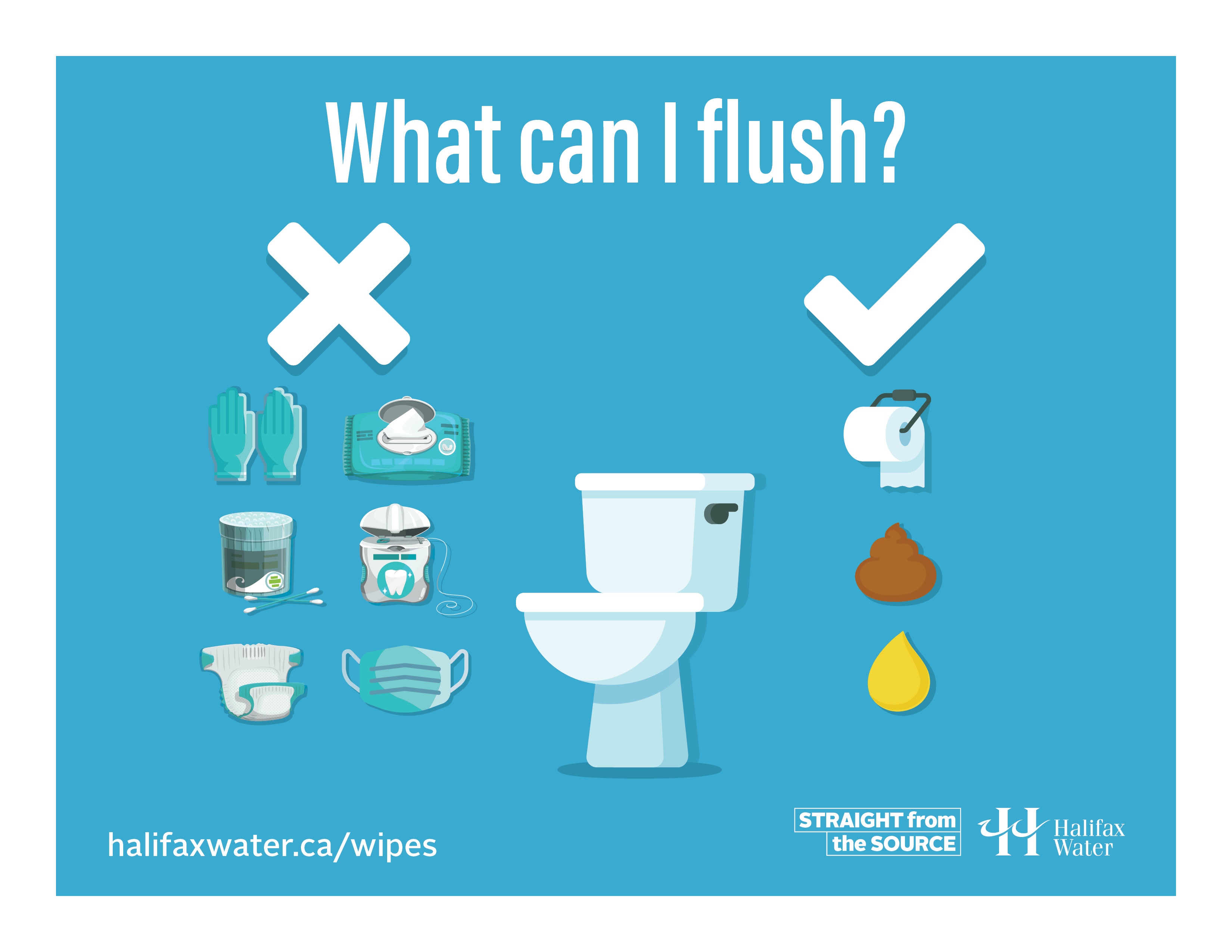 Don't Flush Wipes or Gloves - Posters - 8.5in x 11in - 5
