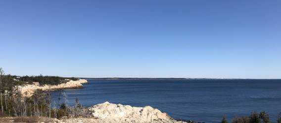 Photo of Herring Cove from HCWWTF